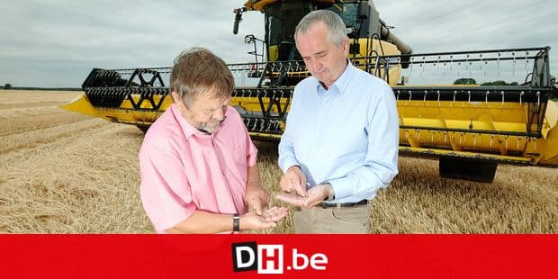 06 July 2018, Germany, Arzberg: Wolfgang Vogel (L), President of Saxony's Regional Farmers' Association, and Saxony's agricultural minister Thomas Schmidt of the Christian Democratic Union (CDU) standing on a wheat field in North Saxony, and holding wheat grains in his hands. The Saxon Ministry of Agriculture and the State Famers' Association provided information on the harvest in times of drought. Photo: Sebastian Willnow/dpa-Zentralbild/dpa Reporters / DPA