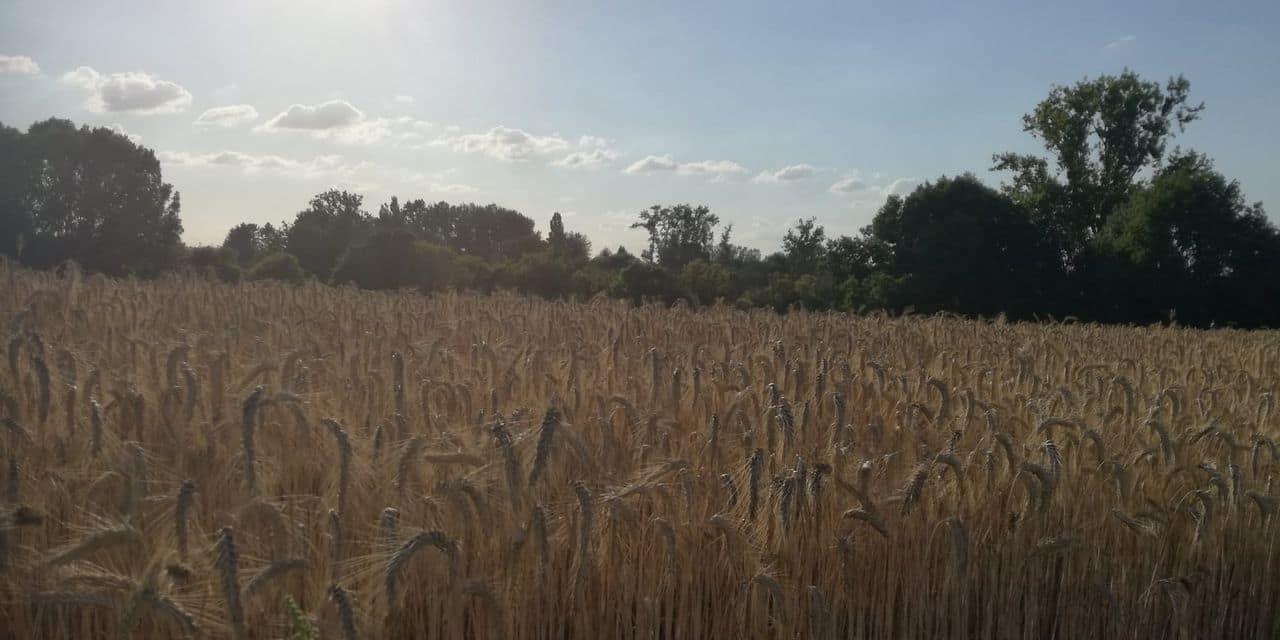 Quévy protège ses agriculteurs sur la route