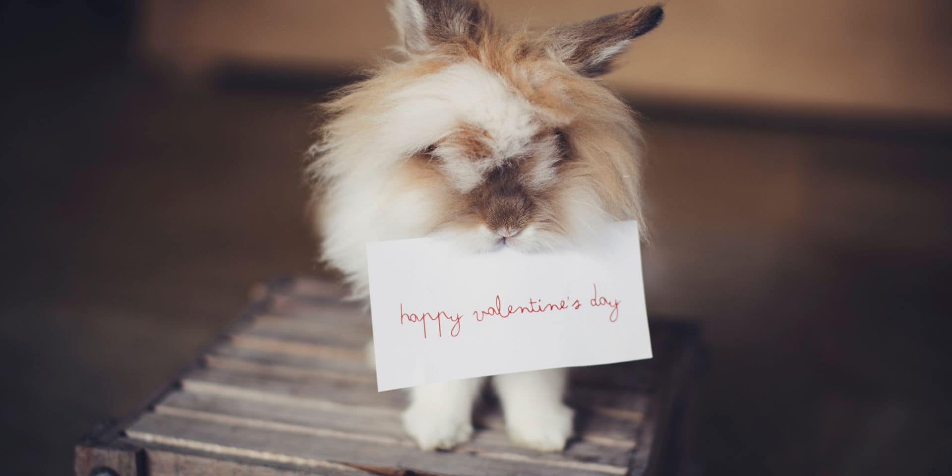Avis aux hommes : ne vous rabattez pas sur ces 10 cadeaux de Saint-Valentin (un peu) pourris !