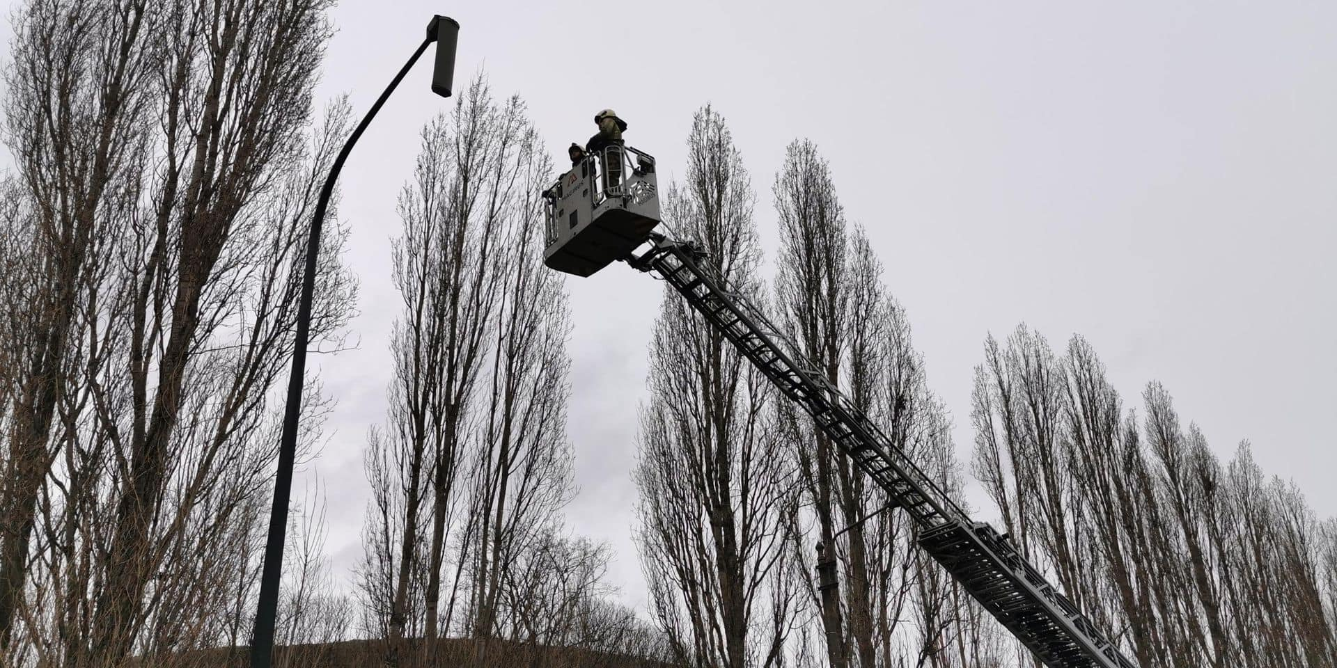 Marchienne-au-Pont: un lampadaire manque de tomber sur la chaussée