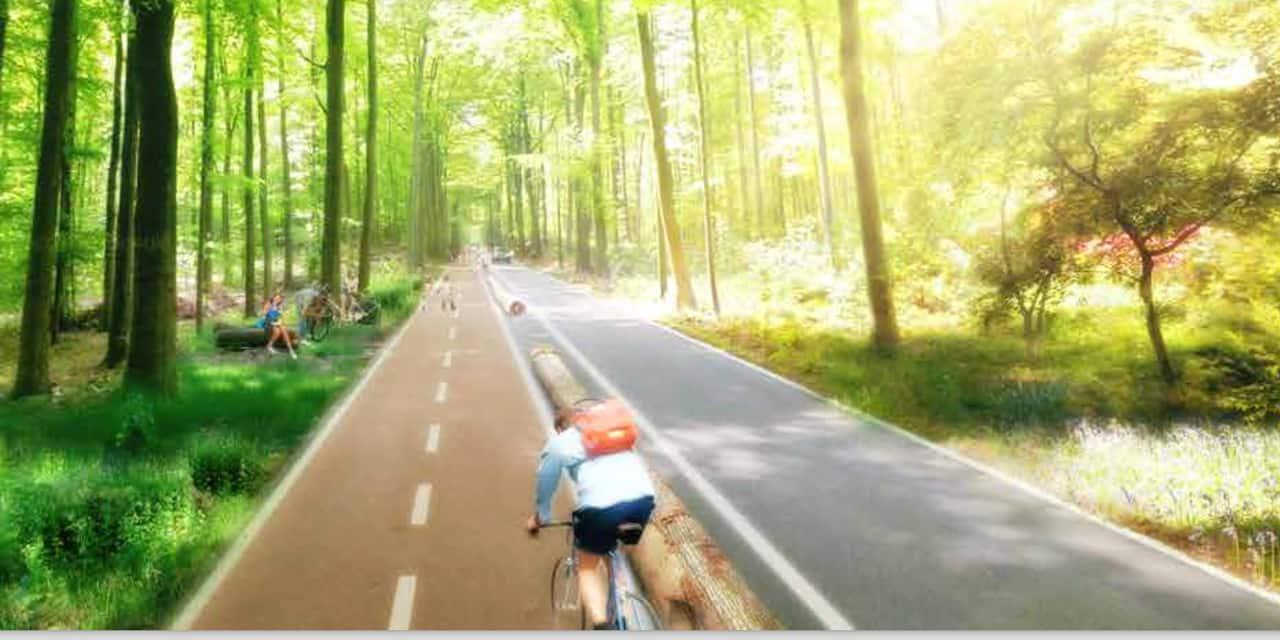 Le test de mobilité aux Quatre Bras de Tervueren n'aura pas lieu : la ministre flamande de la Mobilité fait marche arrière