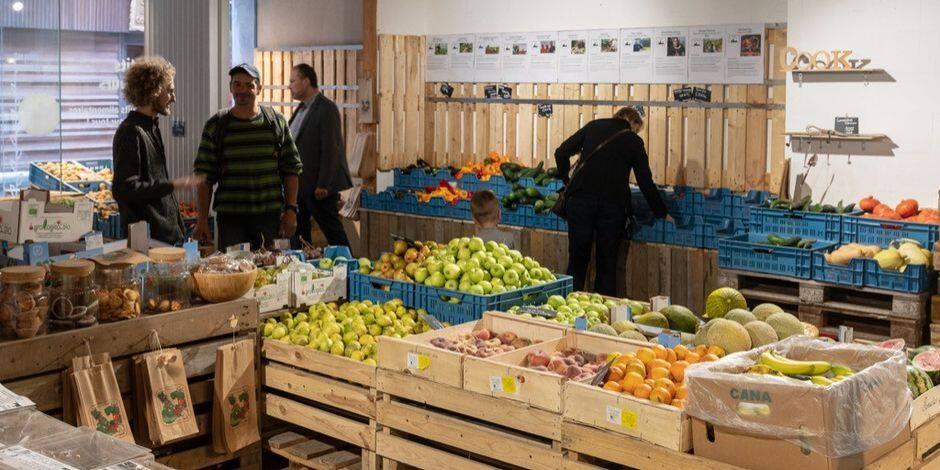 Les Petits producteurs déménagent de Neuvice… en Neuvice