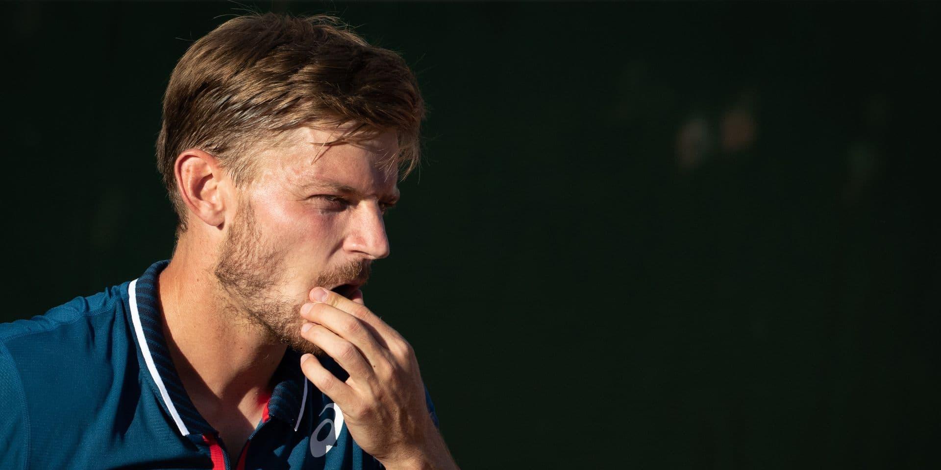 Nouveau classement ATP: David Goffin toujours 20e, Mertens reine du Double et 17e en simple