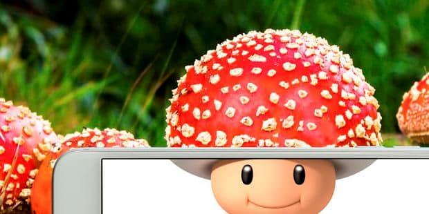 Stormy Daniels compare le pénis de Trump à Toad de Mario Kart