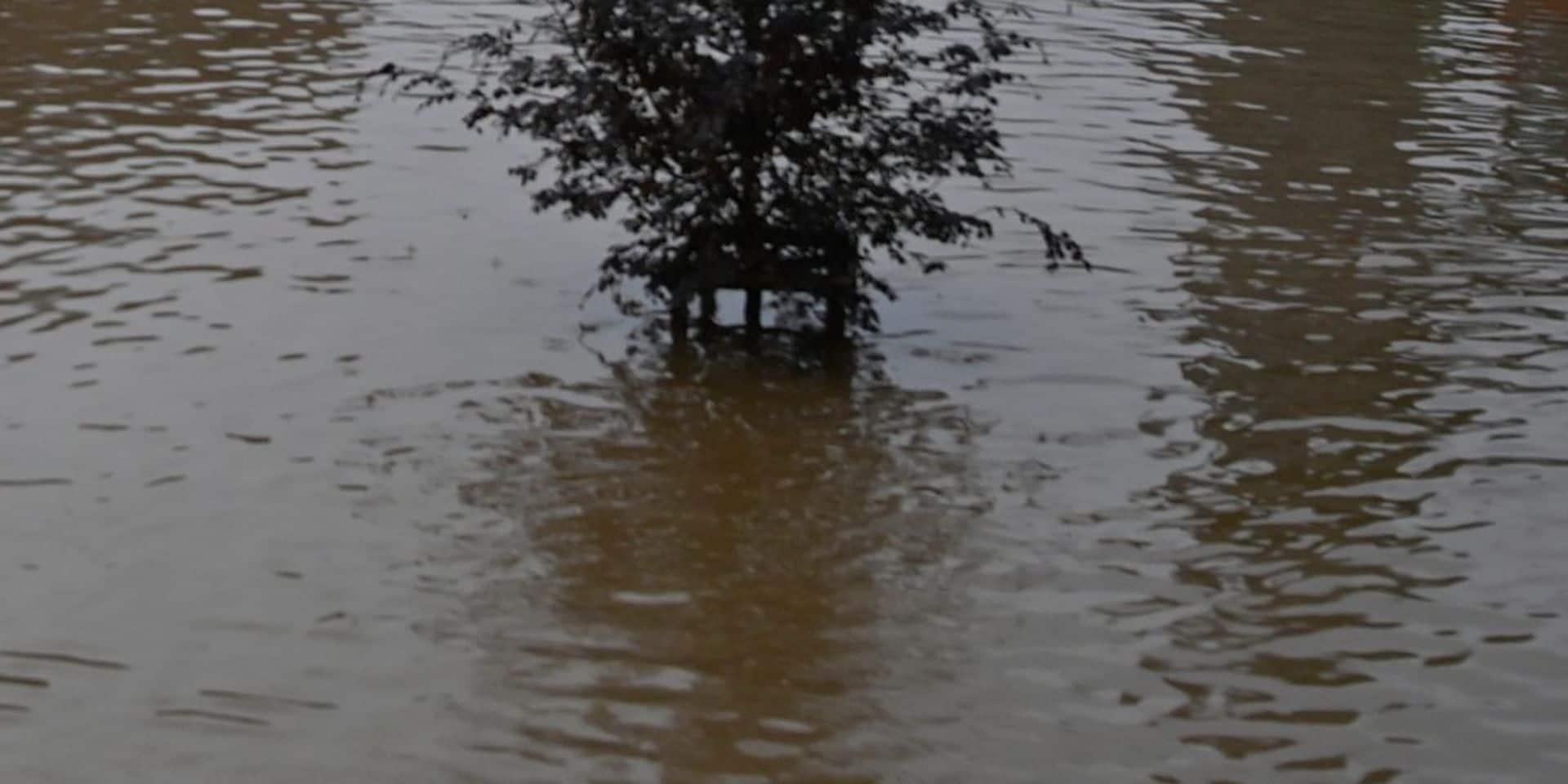 Huy : Sauvetage en Mehaigne en cours