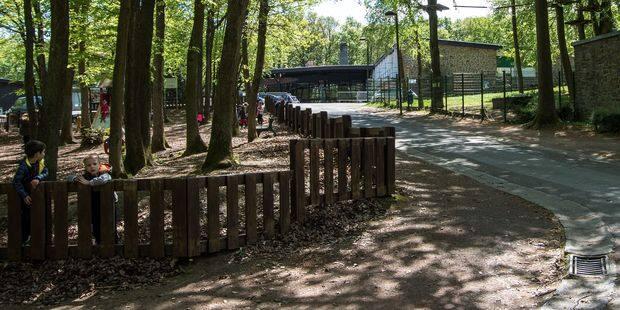 Marcinelle: bientôt des milliers d'enfants carolos en classe verte dans le bois du Prince - La DH
