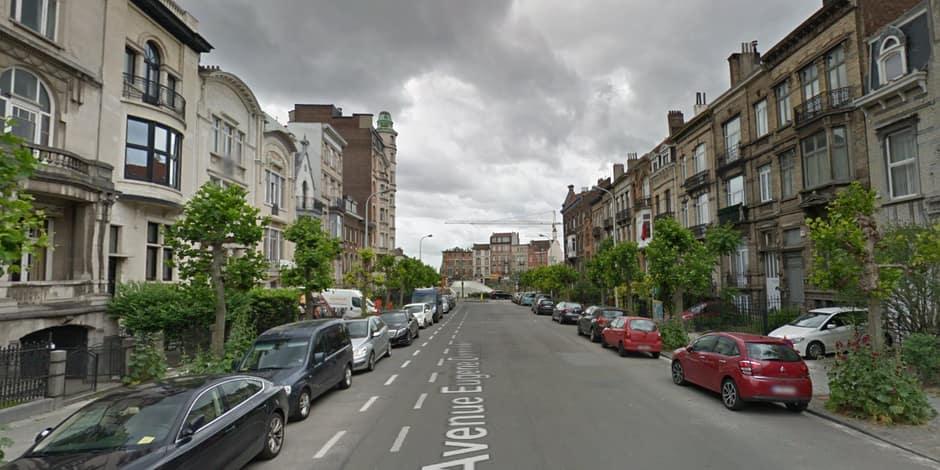 Schaerbeek : Une action contre l'abattage de 134 platanes avenue Eugène Demolder