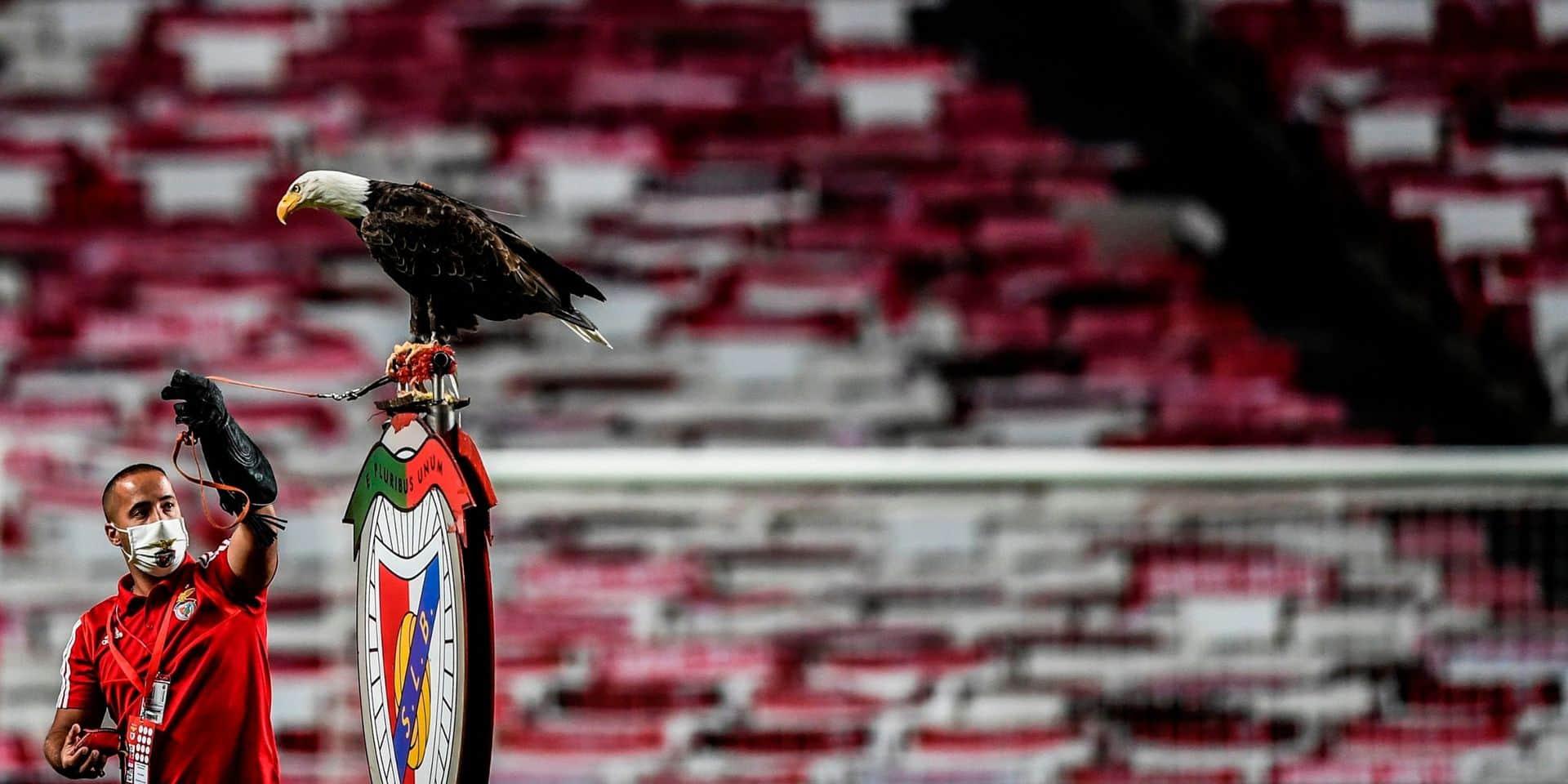 Benfica confirme l'inculpation de son président pour fraude fiscale