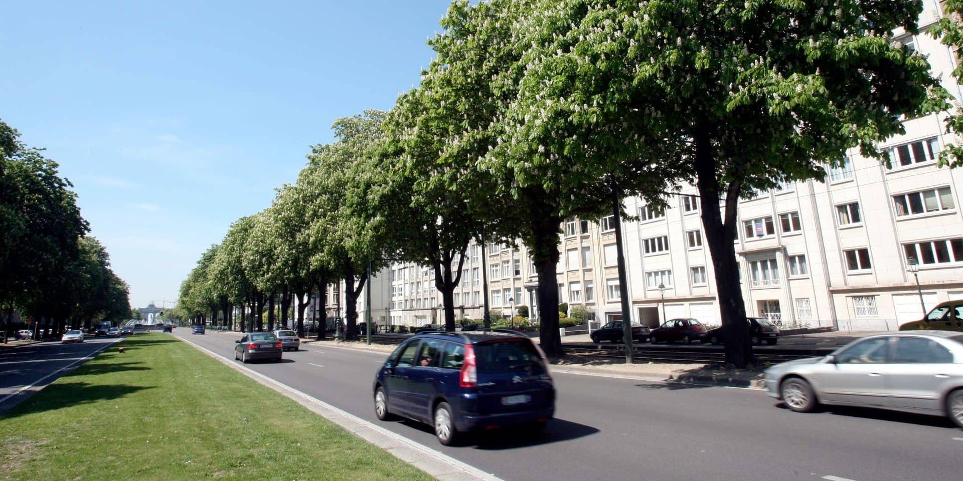 Pistes cyclables sur l'avenue de Tervueren : voici le plan alternatif de Woluwe-Saint-Pierre