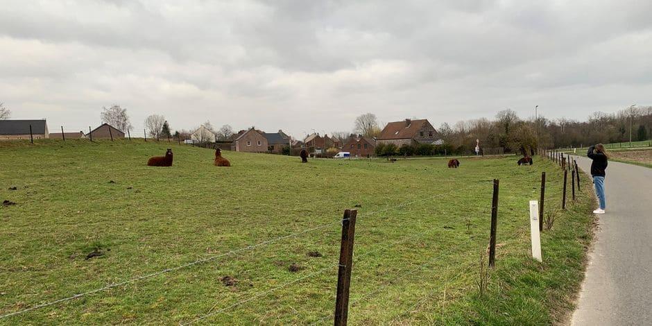 Le plan d'action pour le climat approuvé à Villers-la-Ville