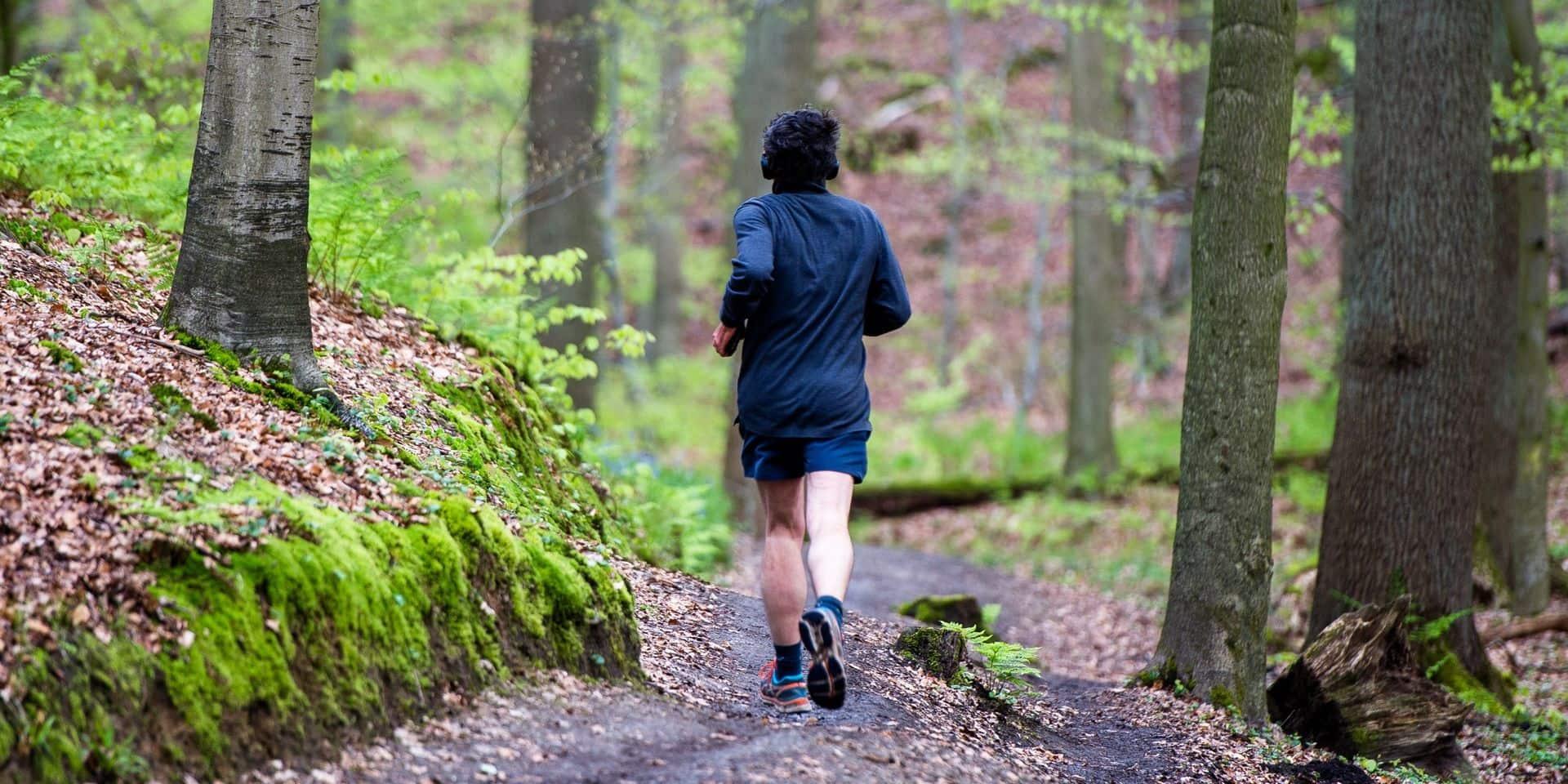 Dix itinéraires trails balisés à faire en Belgique