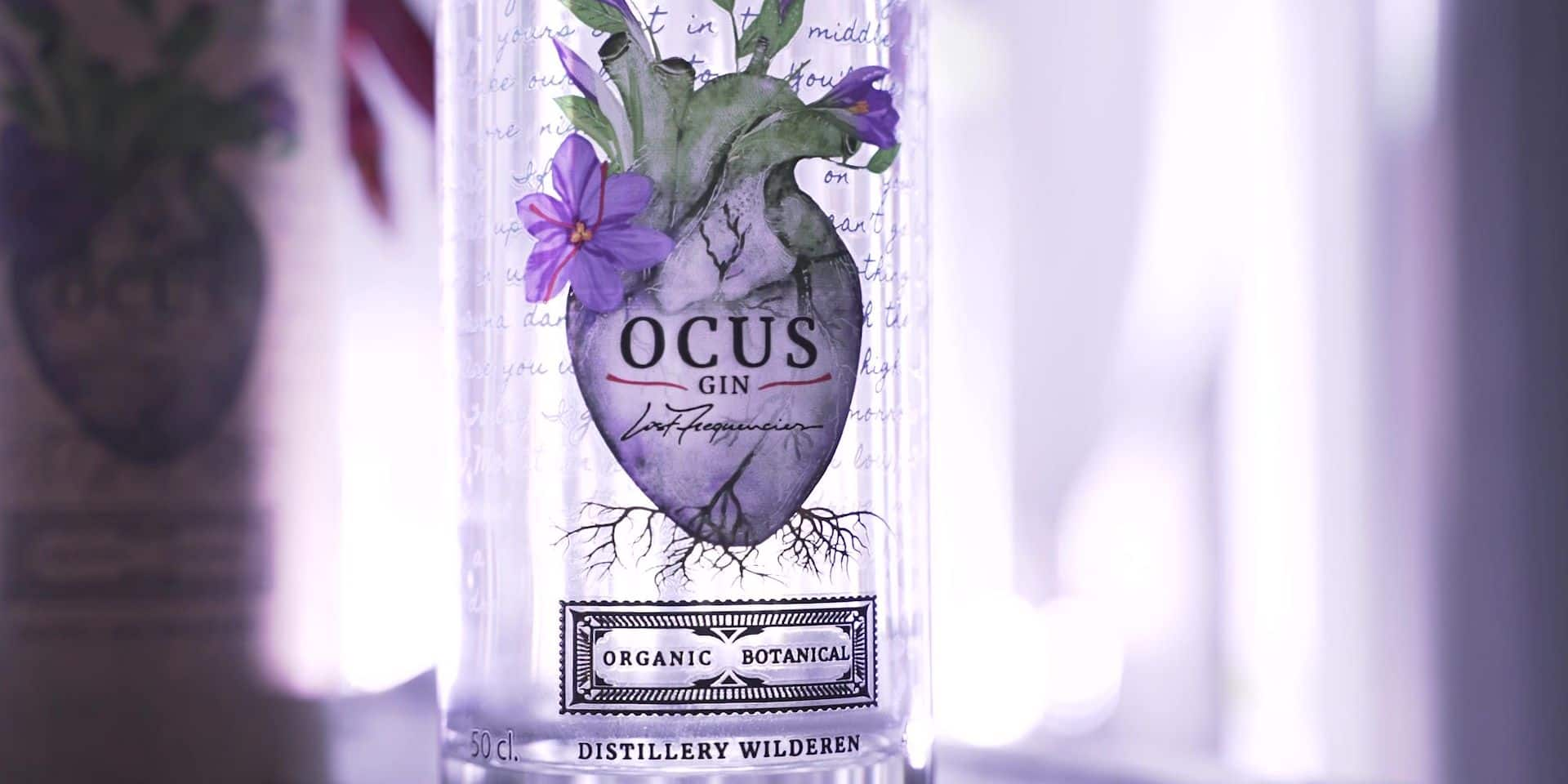 Ocus by Lost Frequencies, le gin belge qui a des vibes
