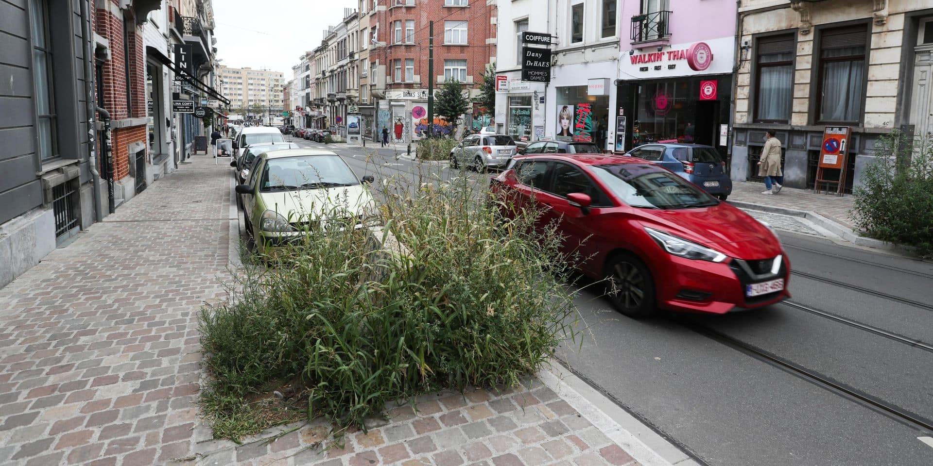 Ixelles : L'absence d'arbres dans la rue Lesbroussart agace les riverains