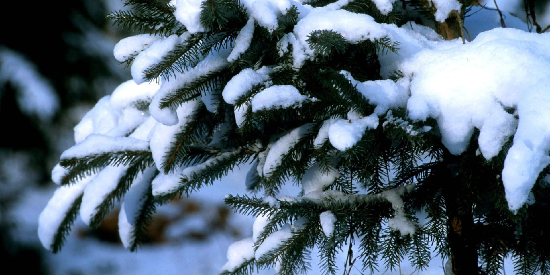 De la neige attendue en Belgique ce mardi: voici où elle devrait tomber