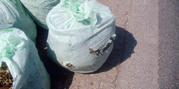Les nouveaux sacs verts biodégradables ne résistent pas à la pluie - La DH