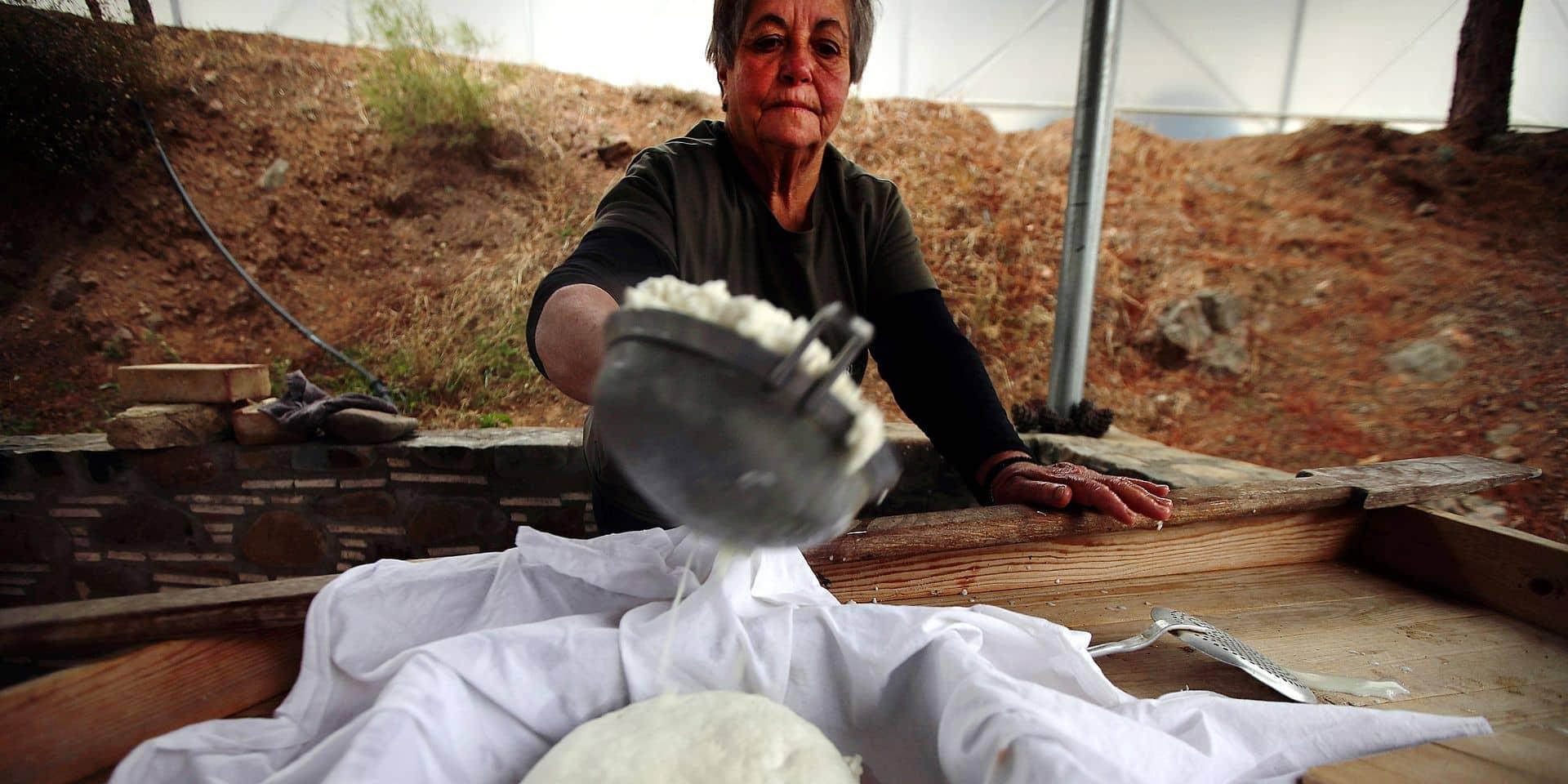Le halloumi, vache à lait pour l'île de Chypre