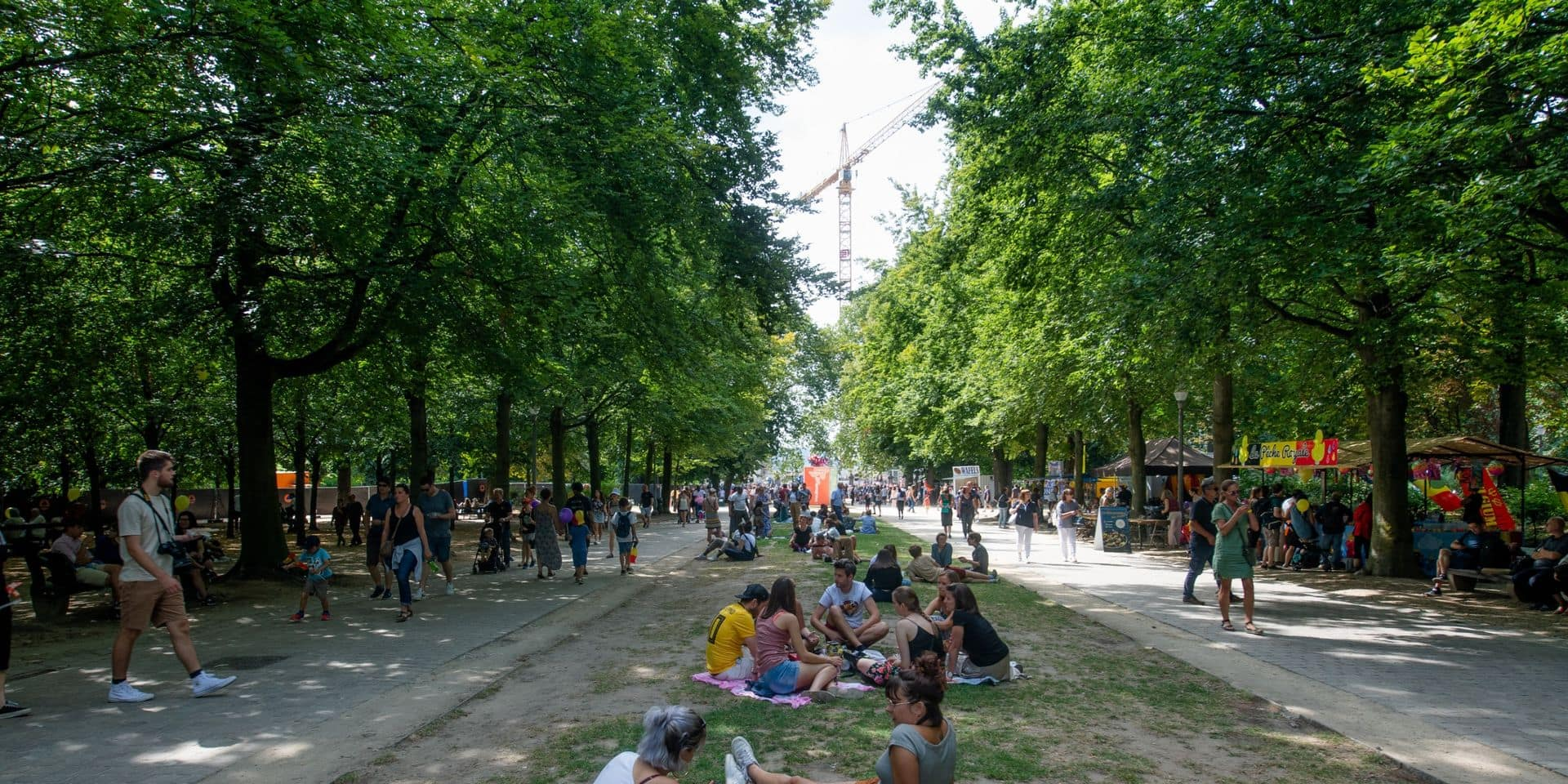La région bruxelloise a perdu 14,4% de ses espaces verts en 15 ans