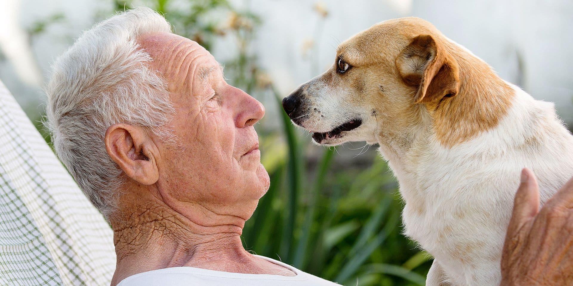 Le chien, notre allié anti-dépression