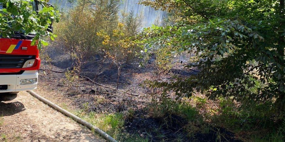 Incendie au Recyparc de Wanze, la chaleur pourrait en être la cause