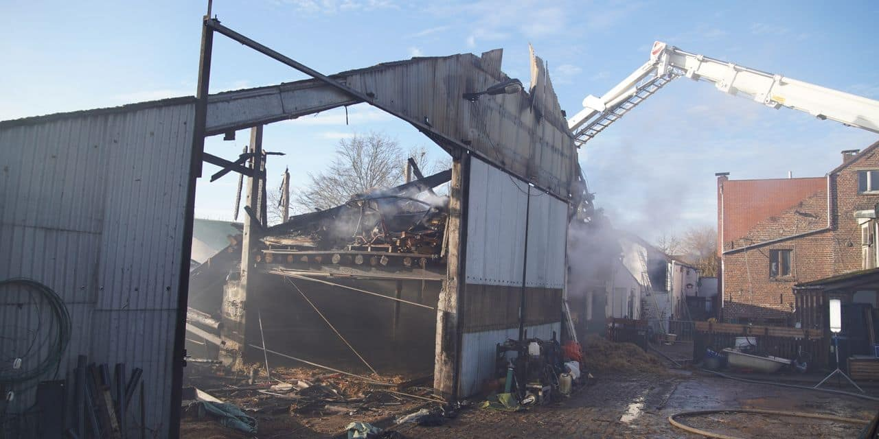 Incendie dans une ferme à Vieusart: une cagnotte lancée pour soutenir la famille sinistrée - dh.be