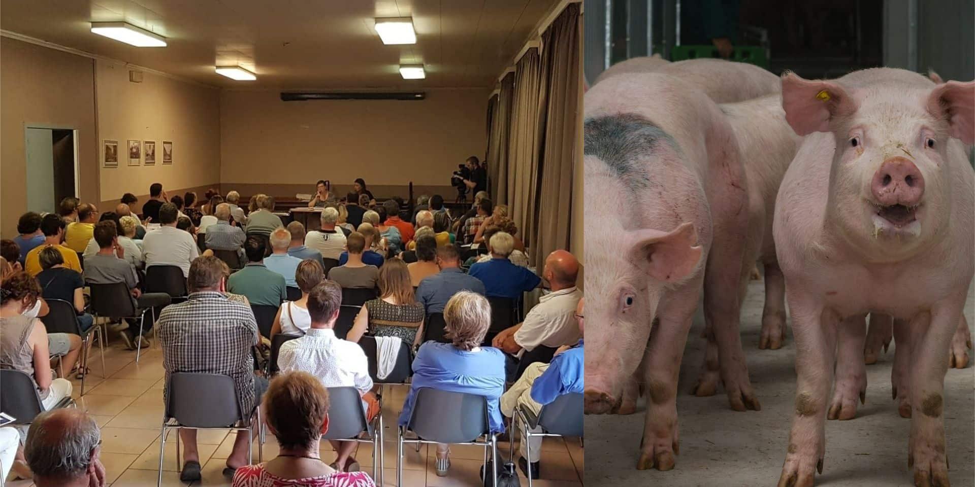 Une pétition lancée contre le projet de porcherie à Ronquières