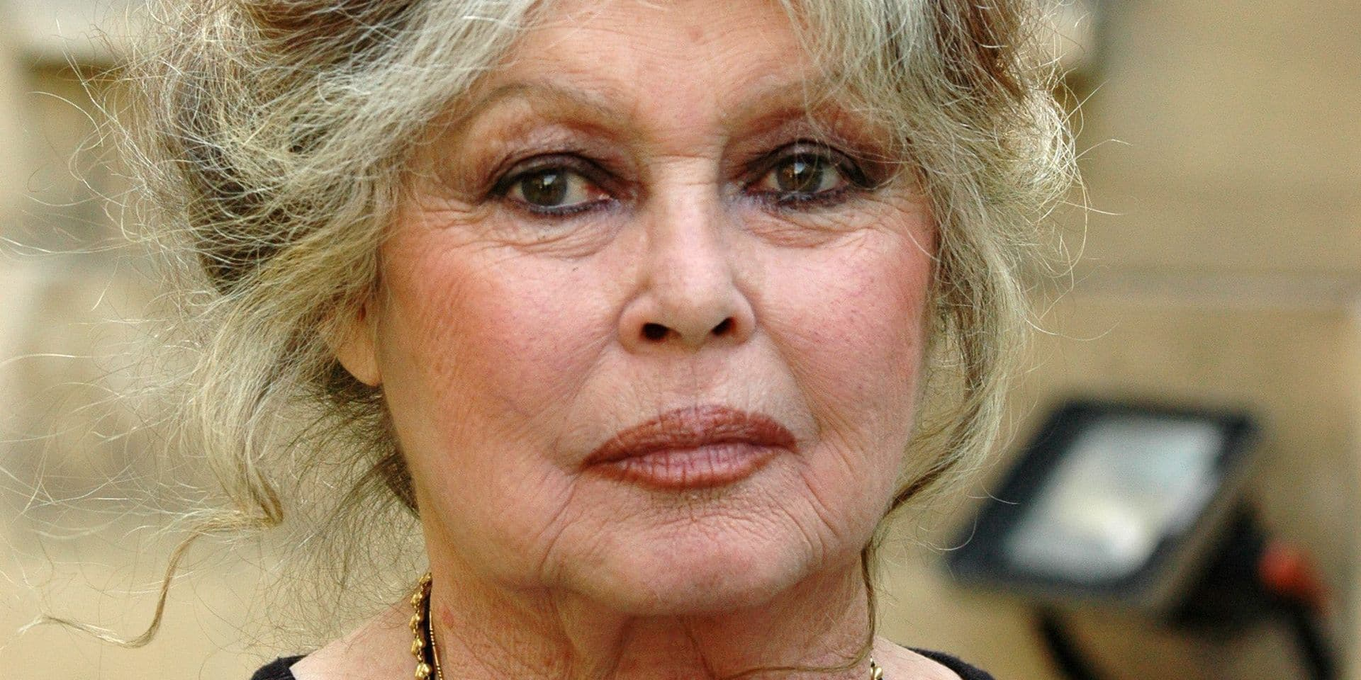 Brigitte Bardot threatens to become Russian if elephants are killed FILE PICTURES