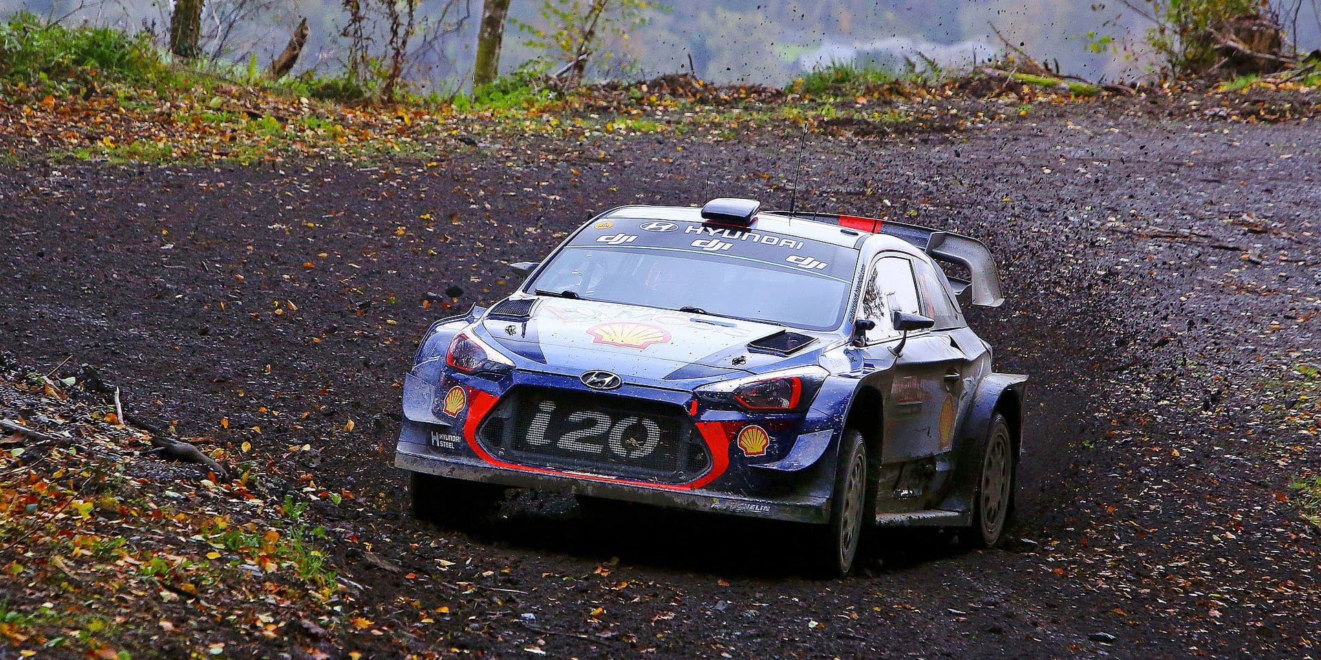 Belgian pilot Thierry Neuville and co pilot Nicolas Gilsoul of Hyundai Motorsport compete in their Hyundai i20 WRC during the special stage 19 of the Wales Rally GB, the penultimate stage of the FIA World Rally Championship, in Gwydir, Mid Wales on October 29, 2017. / AFP PHOTO / Geoff CADDICK