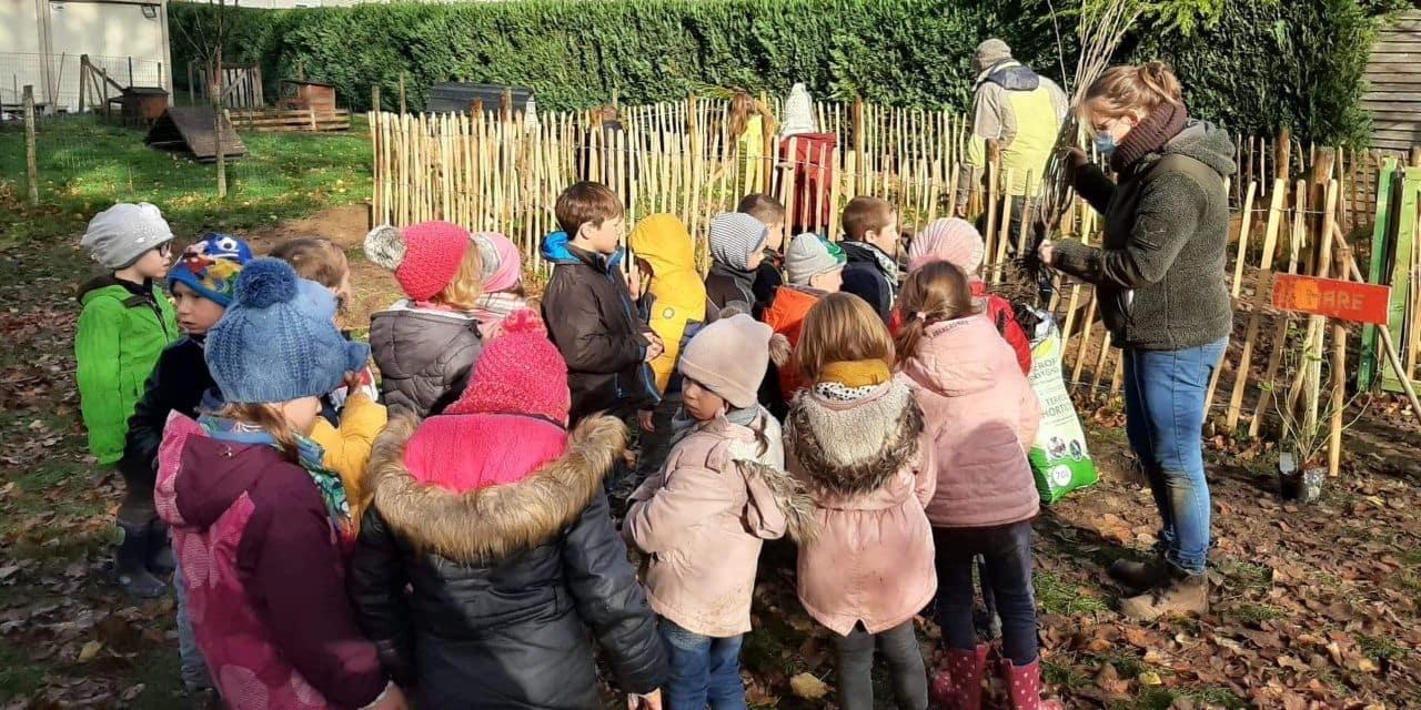 """Vielsalm : l'école Saint-Laurent de Grand-Halleux """" Ose le vert"""""""