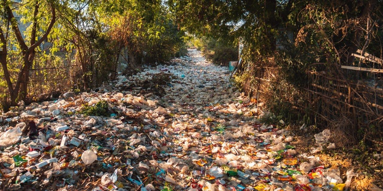 """Il déverse des déchets en pleine nature, la commune les lui réexpédie: """"Il va avoir une belle surprise"""""""