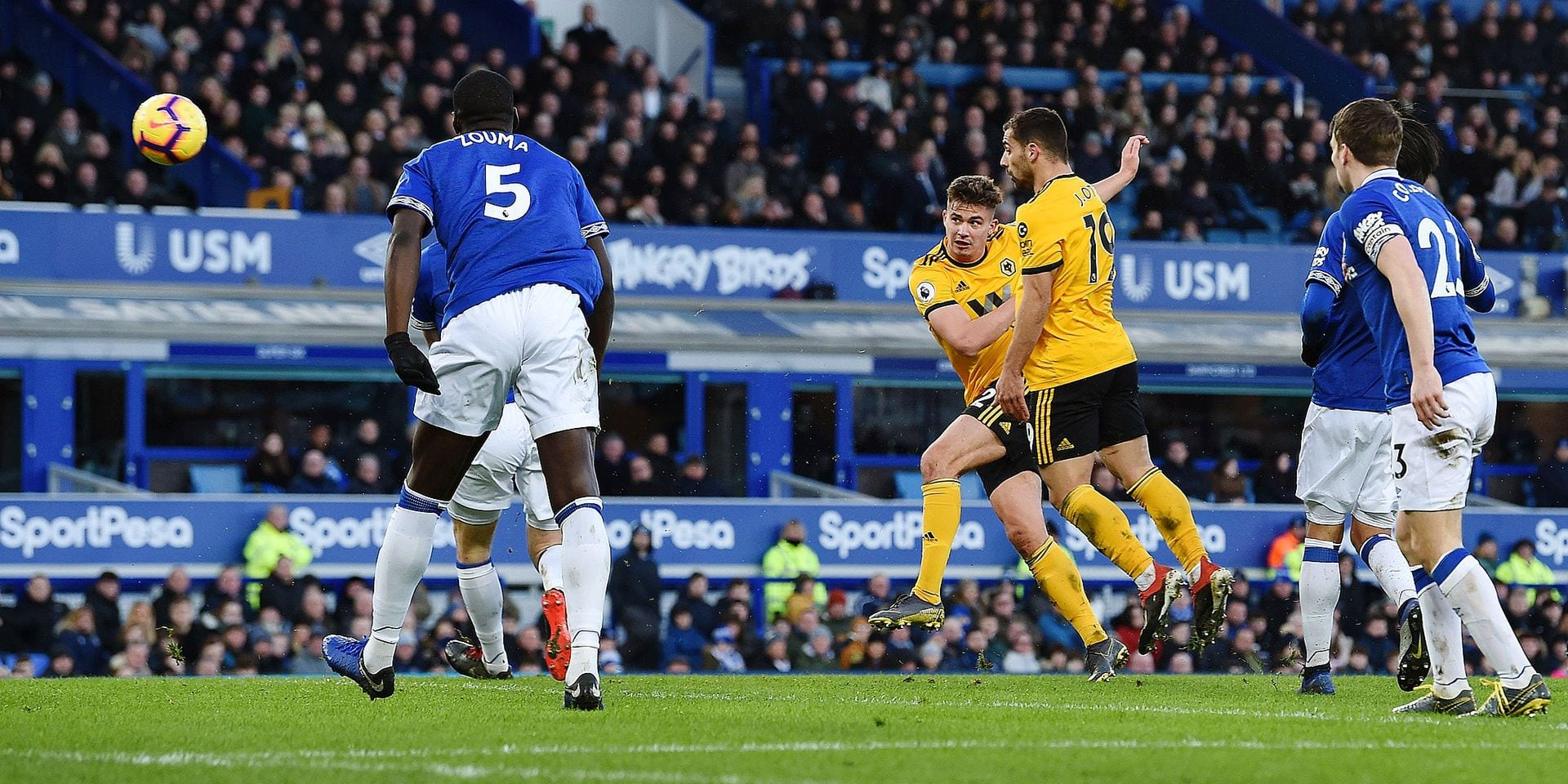 Wolverhampton Wanderers' Belgian midfielder Leander Dendoncker (C) scores their third goal during the English Premier League football match between Everton and Wolverhampton Wanderers at Goodison Park in Liverpool, north west England on February 2, 2019. (Photo by Paul ELLIS / AFP) / RESTRICTED TO EDITORIAL USE. No use with unauthorized audio, video, data, fixture lists, club/league logos or 'live' services. Online in-match use limited to 120 images. An additional 40 images may be used in extra time. No video emulation. Social media in-match use limited to 120 images. An additional 40 images may be used in extra time. No use in betting publications, games or single club/league/player publications. /