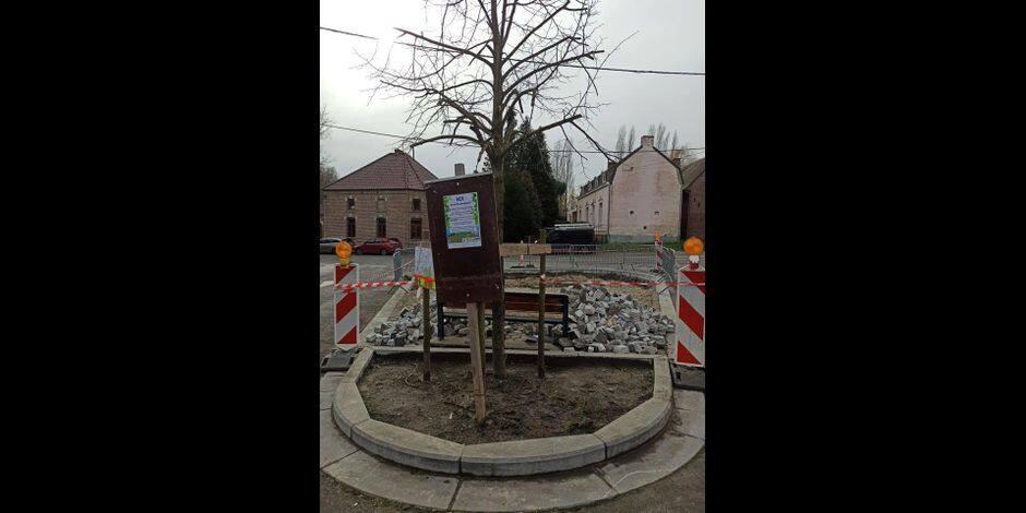 Un verger partagé en cours d'aménagement à Erbaut