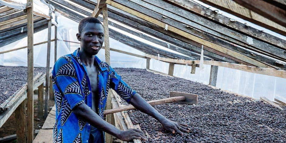 Le fairtrade a le vent en poupe mais certains ouvriers ne gagnent que 67 cents par jour - La DH