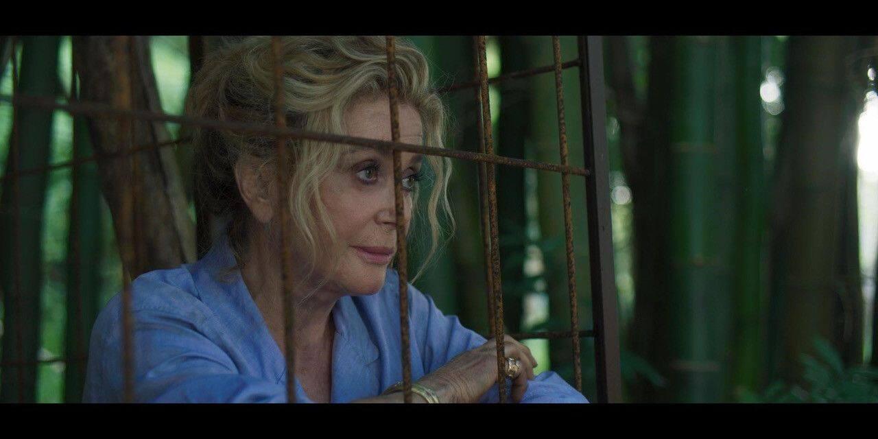 Tourner en pleine jungle avec Catherine Deneuve? Mission accomplie pour deux débutants