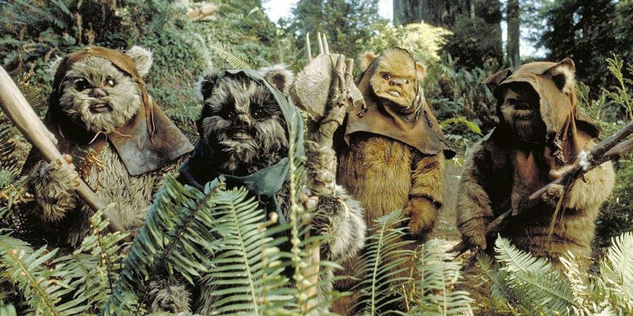 Les Ewoks, de retour dans le Star Wars : Rise of Skywalker ?