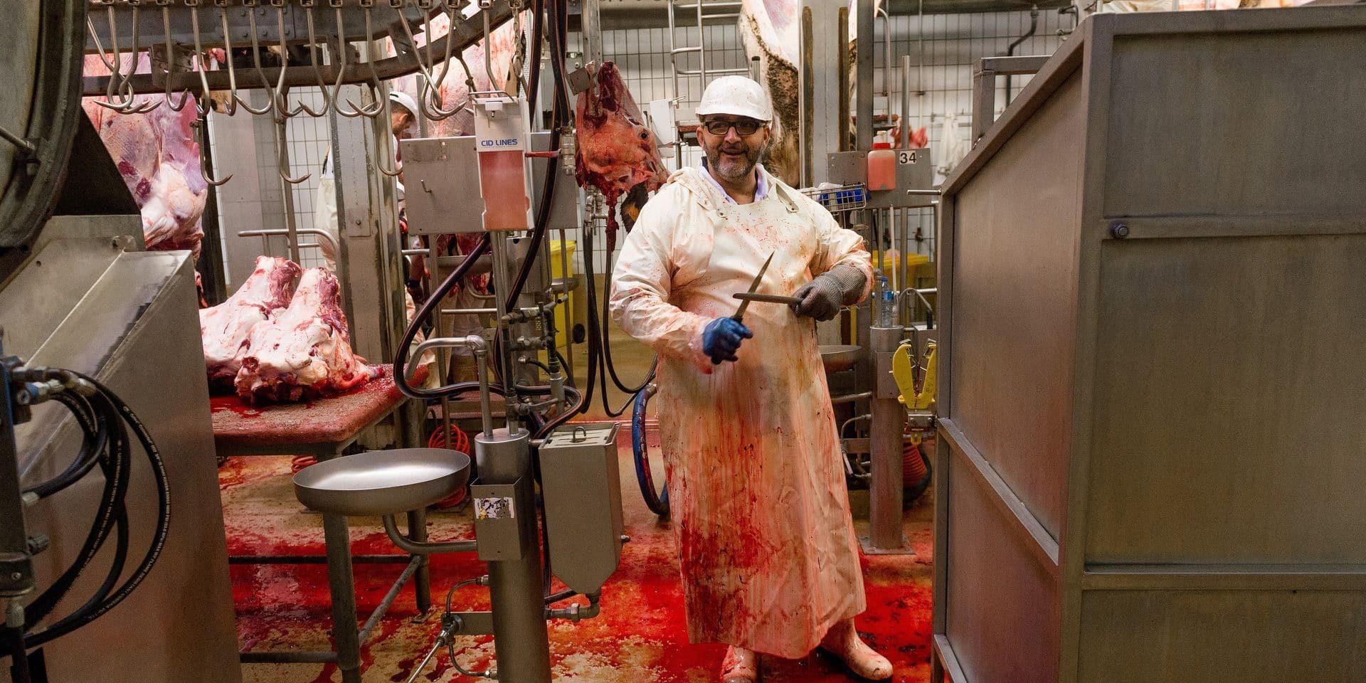 Bruxelles - Anderlecht - Les abattoirs d'Anderlecht - filiere bovine - filiere porcine