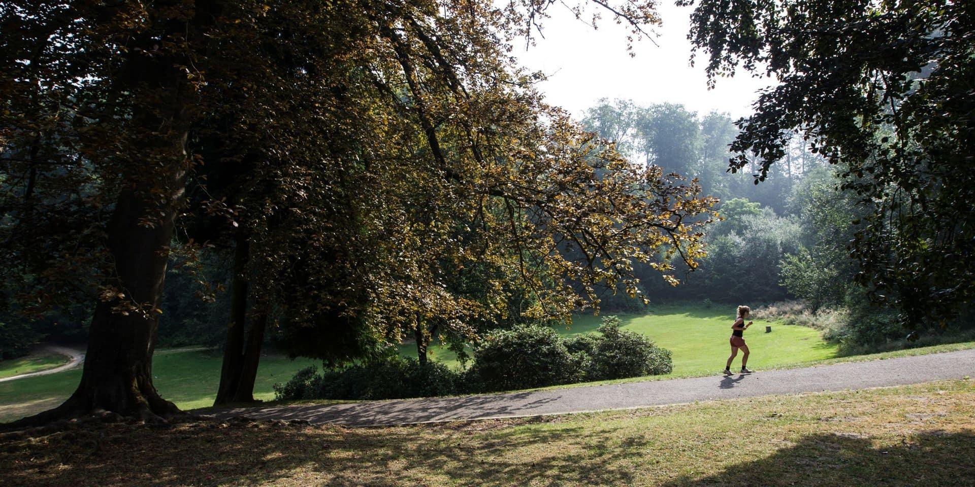 Rafales attendues ce dimanche à Bruxelles : des parcs fermés jusqu'à lundi