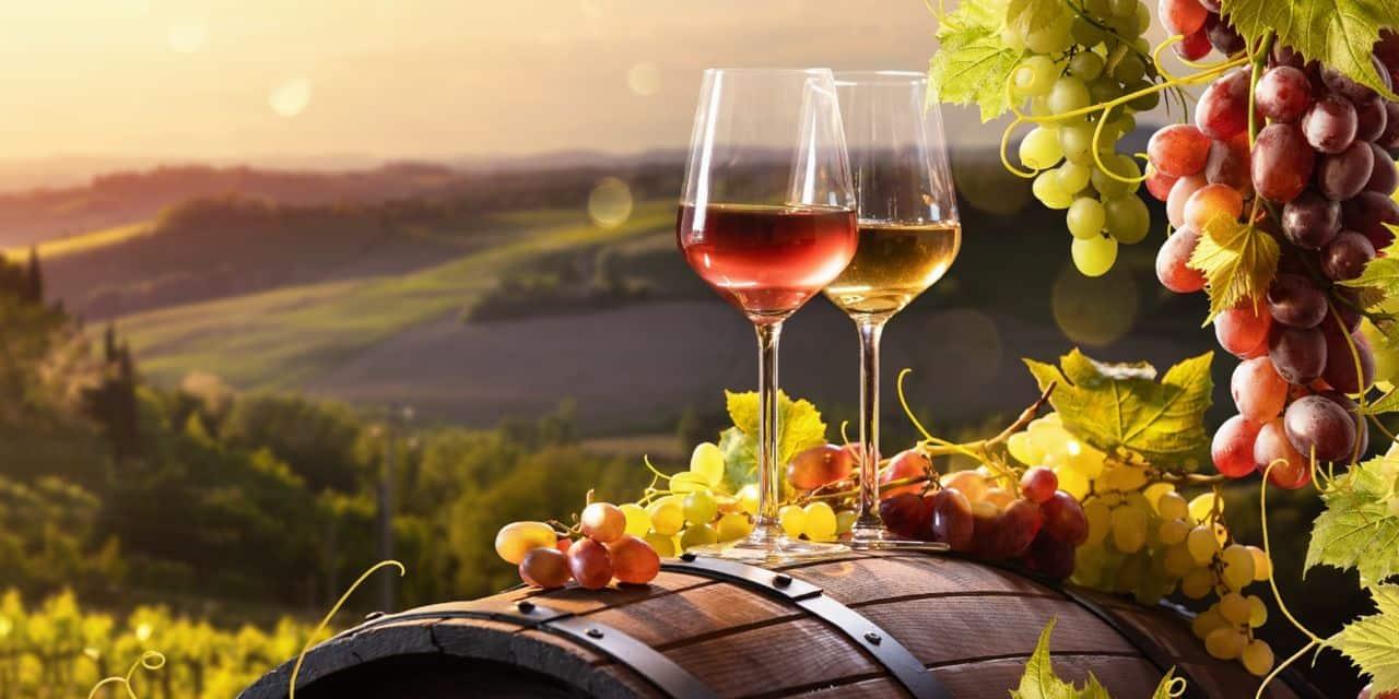 Comment fait-on un vin sans alcool ? voici son élaboration