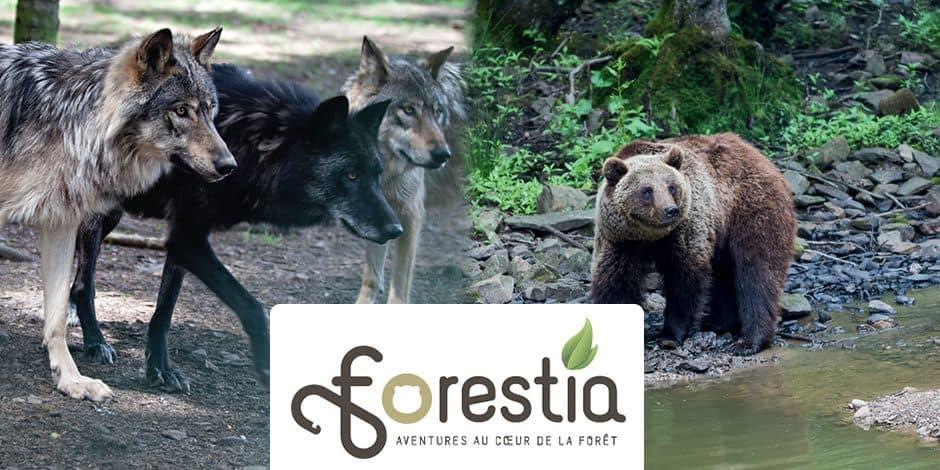 Concours réservé aux abonnés : Tentez de gagner 2 entrées pour le Parc Forestia !