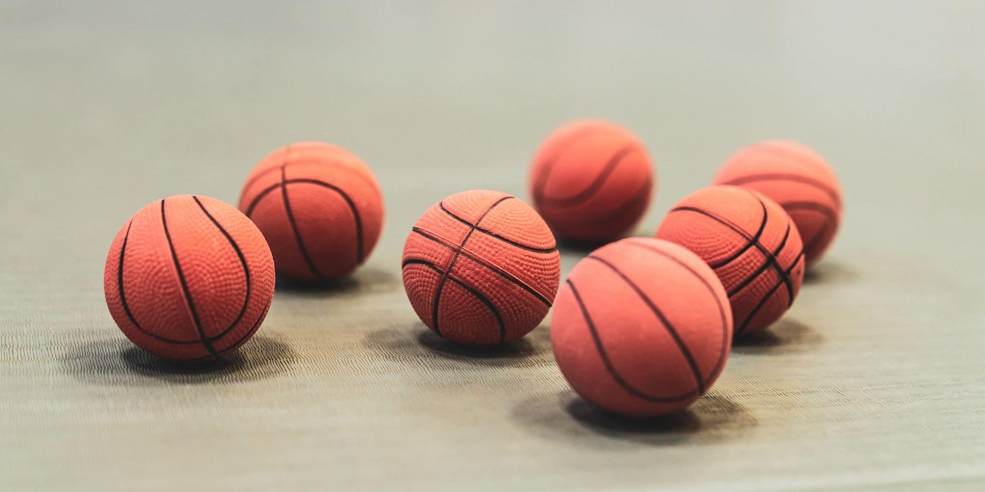 Basket-ball : Malonne, l'épouvantail… avant les play-off