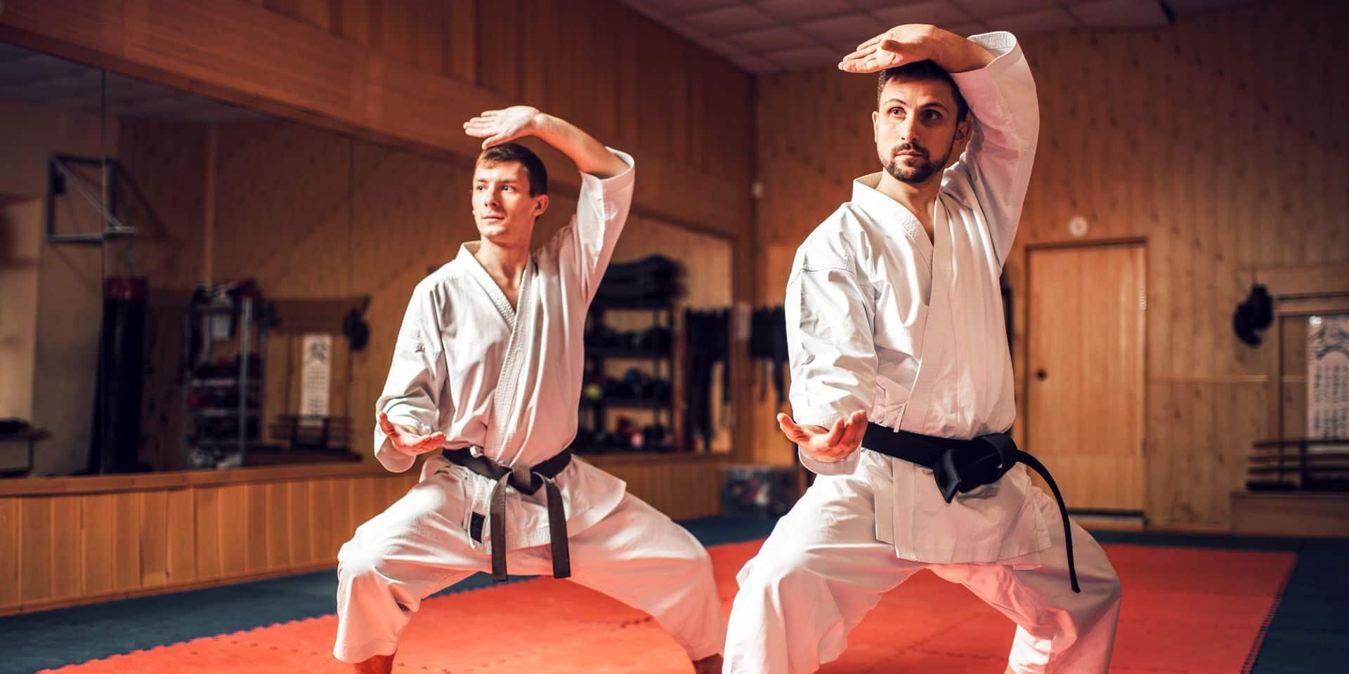 """Le judo et le karaté peuvent reprendre, mais sans contact : """"on fait du foncier, on s'adapte"""""""