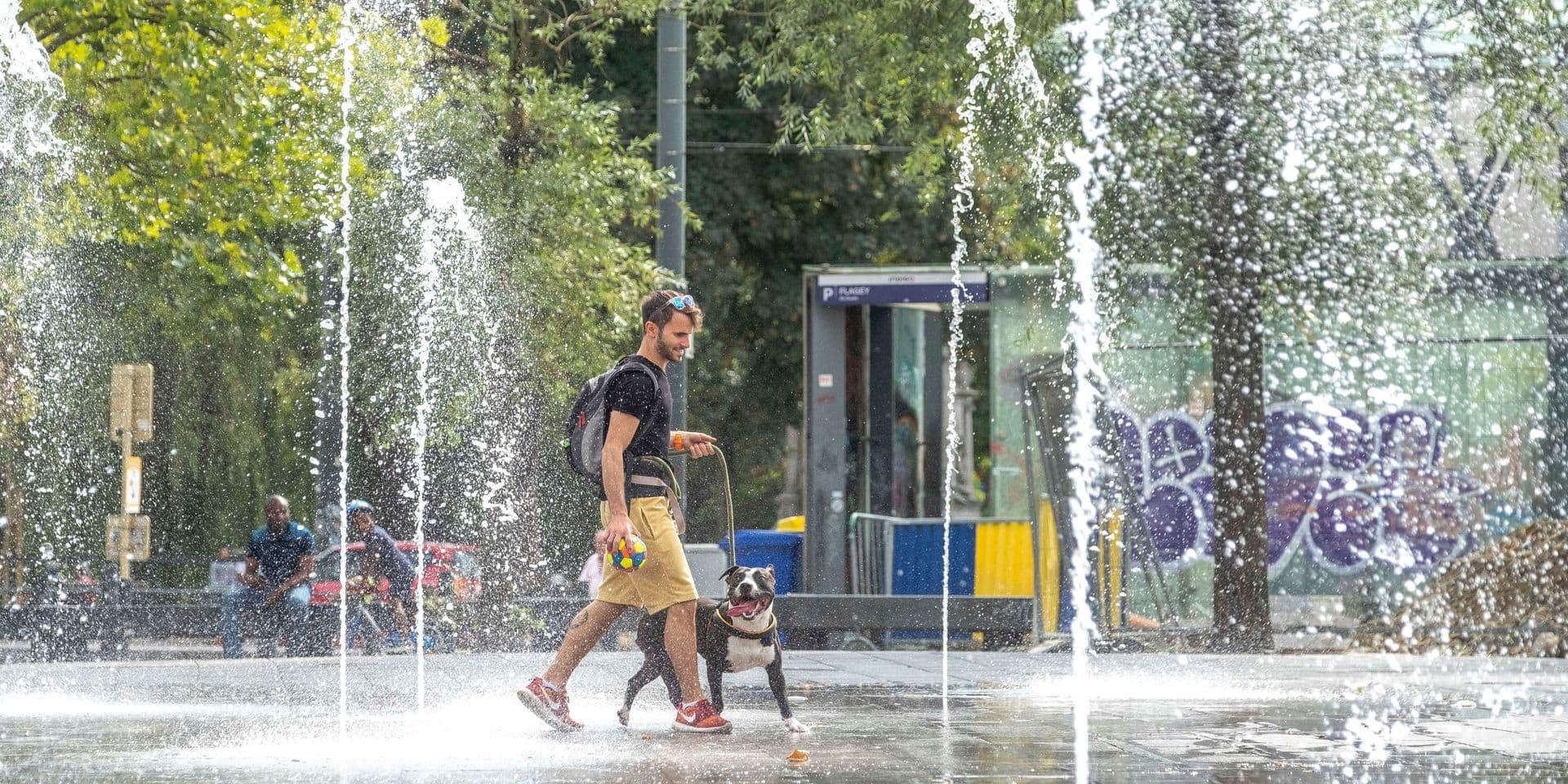 La canicule va frapper la Belgique: quelques astuces gourmandes pour lutter contre la chaleur