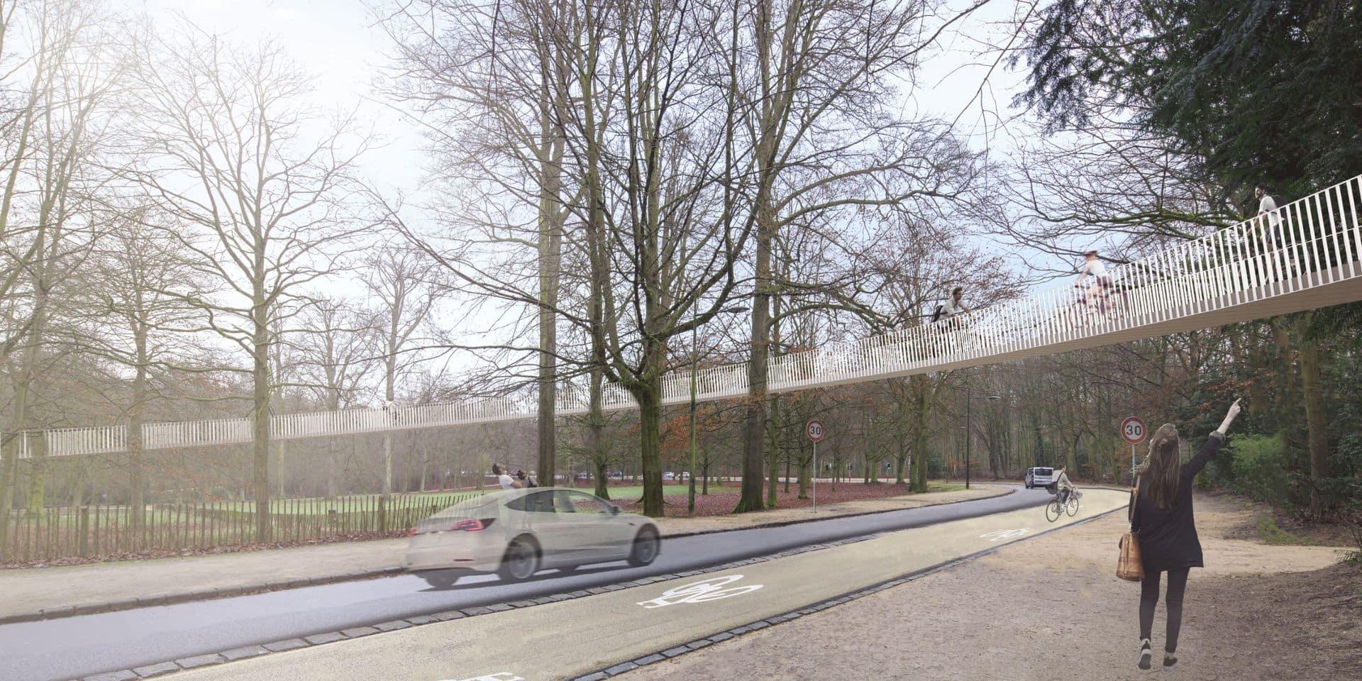 Un projet architectural audacieux pour le Bois de la Cambre