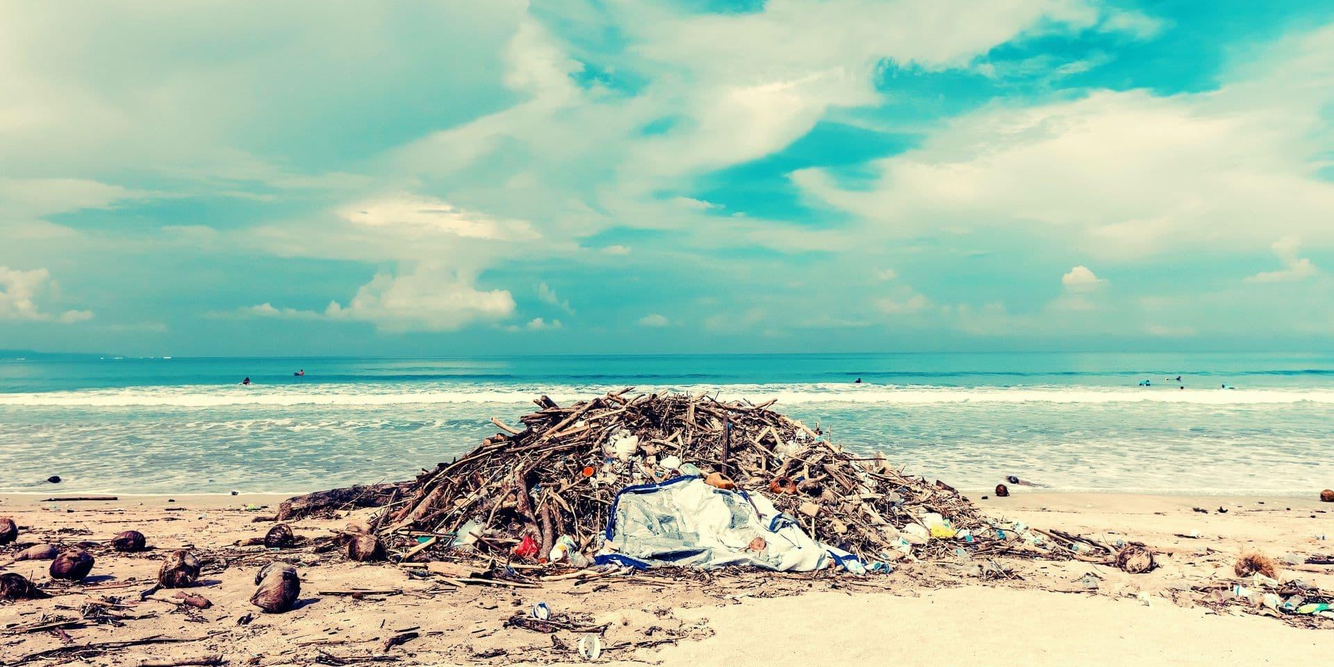 """Une réserve naturelle renvoie les déchets laissés par les pollueurs à leur domicile: """"Cela leur apprendra à ne pas les jeter partout"""""""