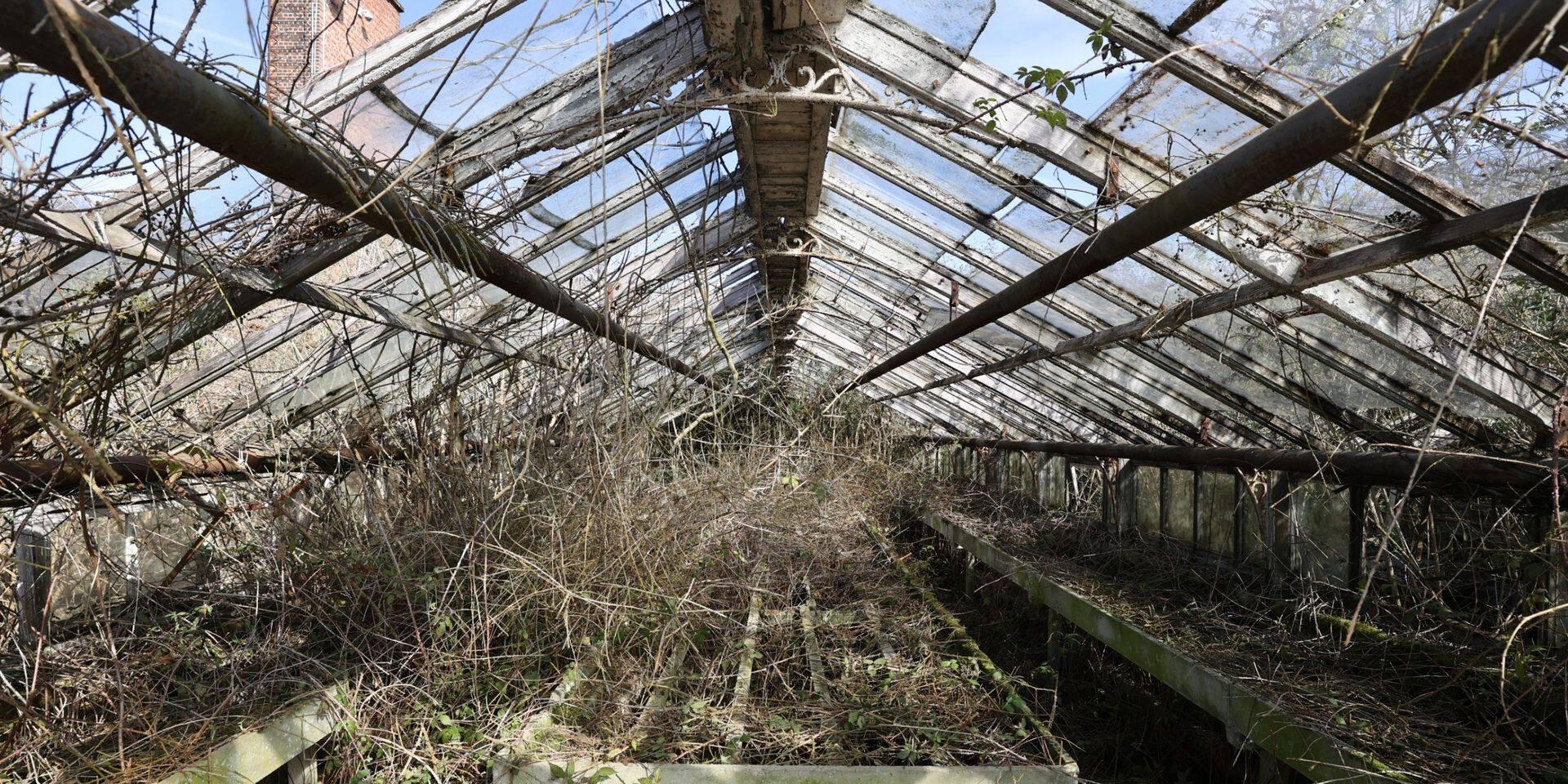 Laeken : Les Serres du Stuyvenberg de Bruxelles Environnement vont être rénovées et ouvertes au public.