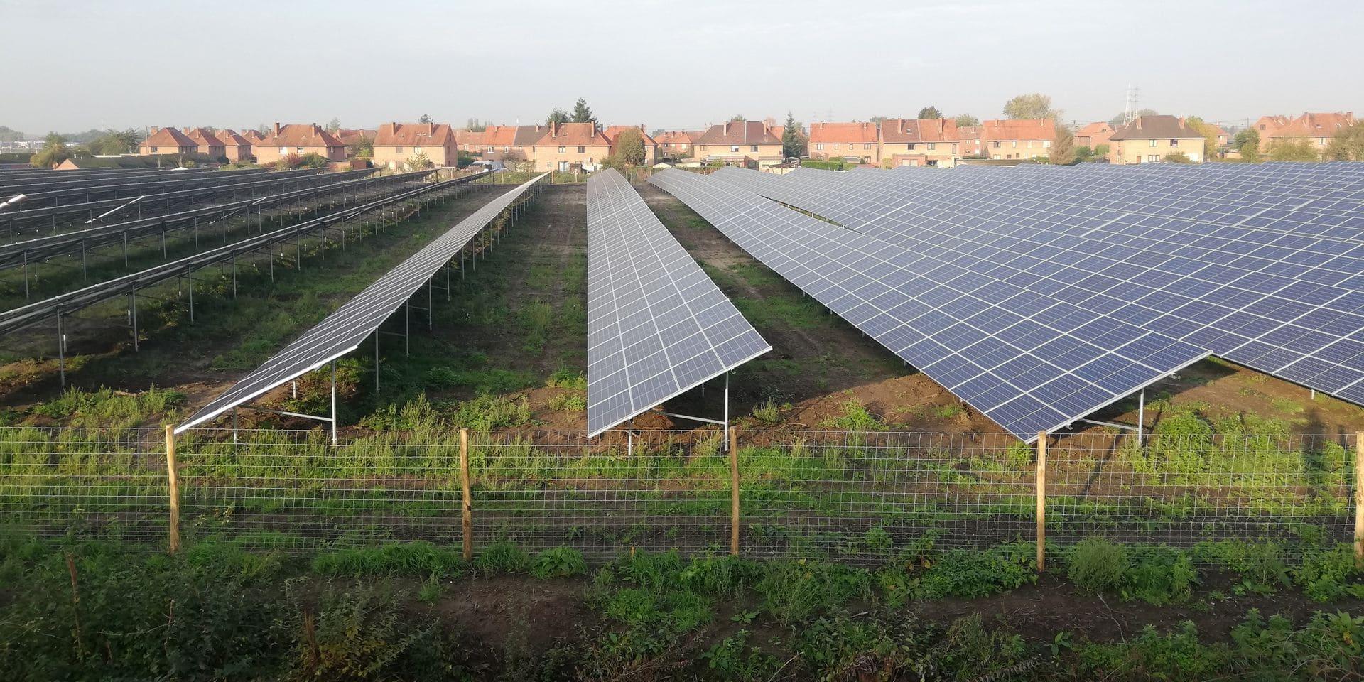 Le Hainaut, terre de parcs photovoltaïques: près de la moitié des nouveaux projets de Wallonie!